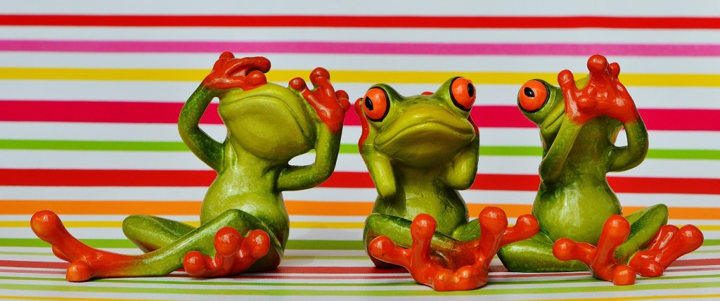 frogs-1293690_1920