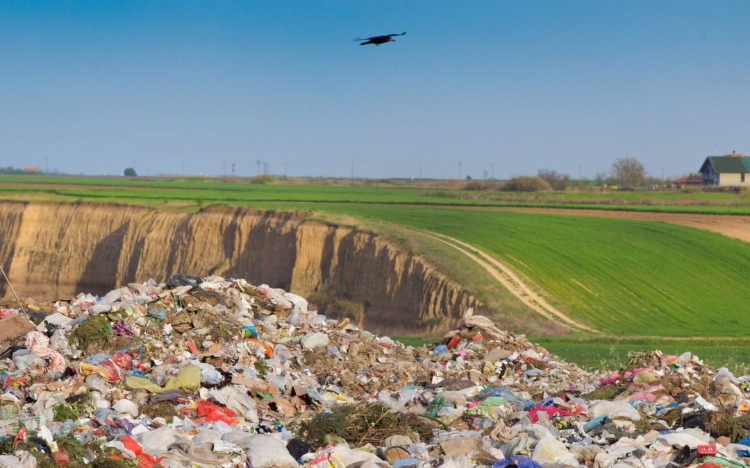 It's A Landfill, Not A Compost Bin