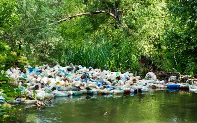 Consumerism – Stepping Out Of The River